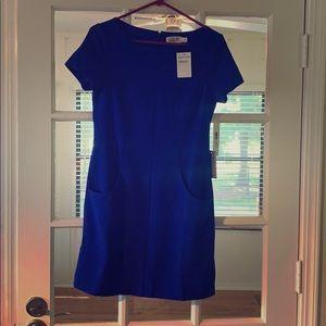 Eliza J Cobalt Blue Dress